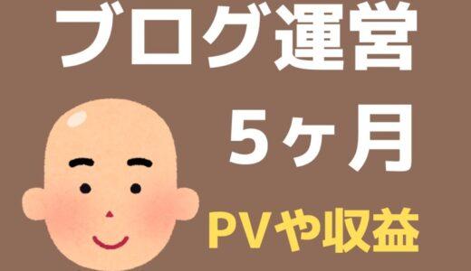 ブログ5ヶ月目のPV・記事数・収益