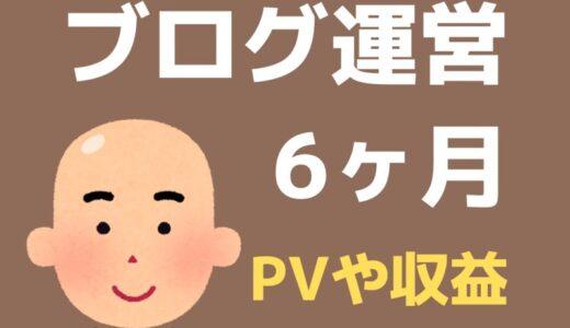 ブログ6ヶ月目のPV・記事数・収益