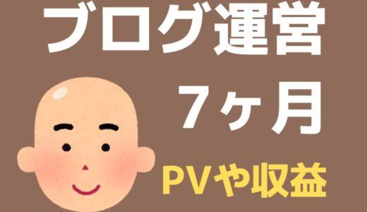 ブログ7ヶ月目のPV・記事数・収益