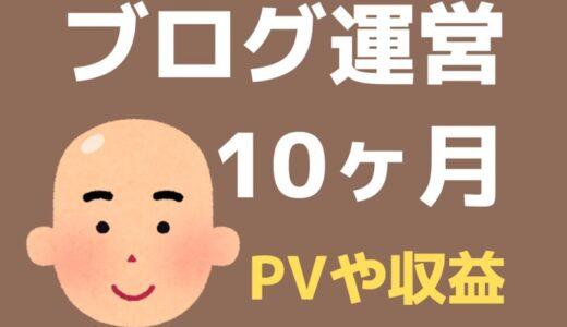 ブログ10ヶ月目のPV・記事数・収益