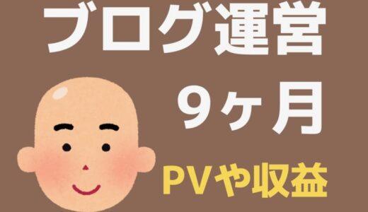 ブログ9ヶ月目のPV・記事数・収益