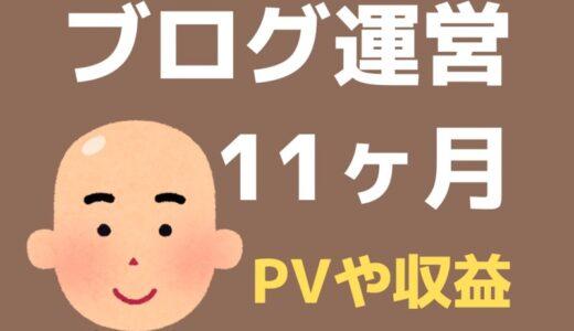 ブログ11ヶ月目のPV・記事数・収益