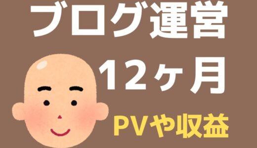 ブログ12ヶ月目のPV・記事数・収益