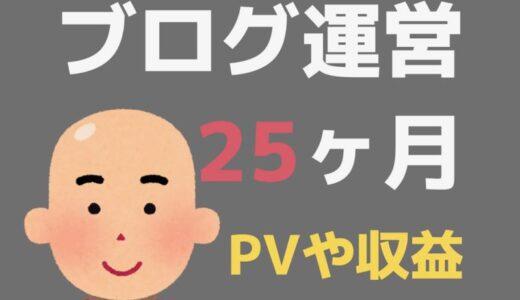 ブログ25ヶ月目のPV・記事数・収益