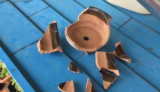 割れた盆栽鉢を修理した話【接着剤は慎重に選ぼう】